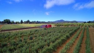 Everything You Need for a 2 Acre Farm – And It Comes in a Box